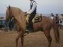 2011 Exhibición equestre